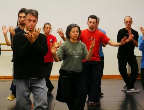 Novità 2019 del corso di Tai Chi allo Spazio Danzarte